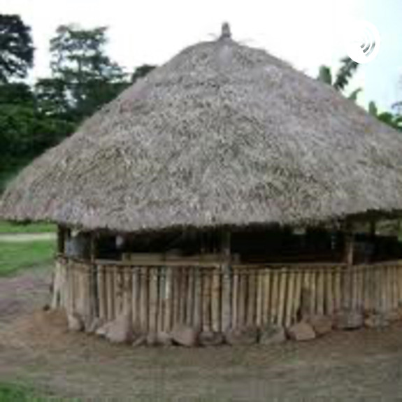 This Is The Palava Hut