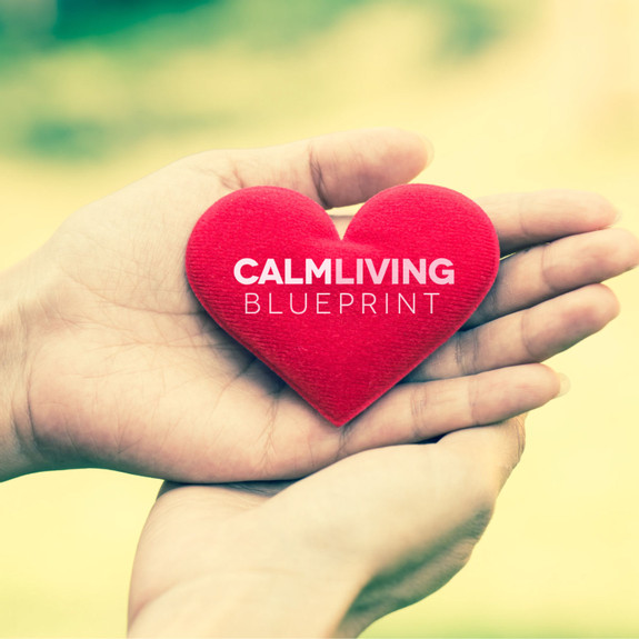 The Calm Living Blueprint: Social Anxiety   Anxiety   Stress   Mindfulness   Inner Peace