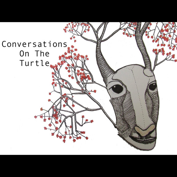 Conversations on the Turtle