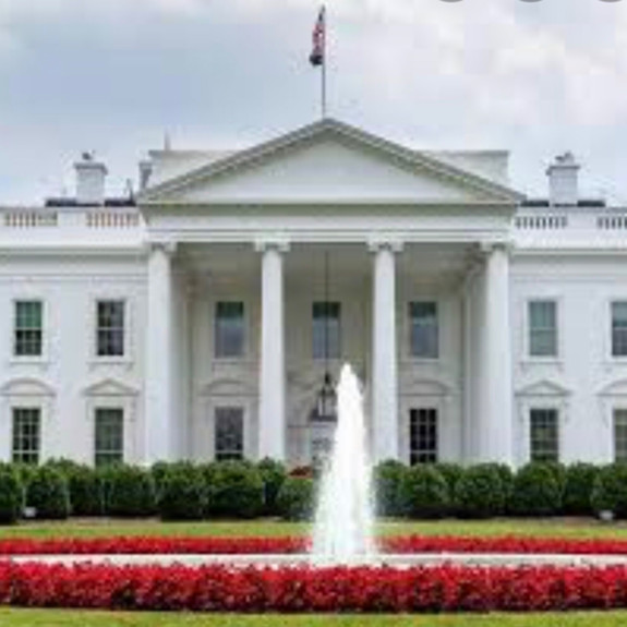 2020 Road to The White House